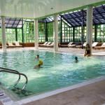 Hotel Solverde Indoor pool